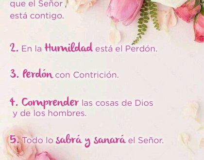 🌹 6 lecciones de Maria